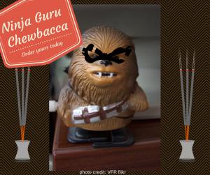 Guru Ninja Chewbacca